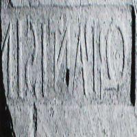 NovumCIL_XV_1355-S.354.2-Moscetti02.2_49.I