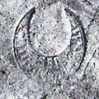 NovumCIL_XV_1004-5-Steinby2012-55