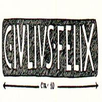 NovumCIL_XV_2449-50.5-DellaCorte29_3a