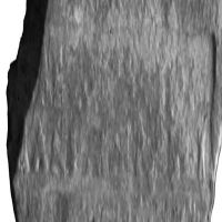 NovumCIL_XI_8106-7.4-UrozSaez2008_7