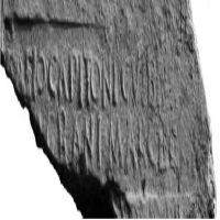 NovumCIL_XI_8106-7.5-UrozSaez2008_8