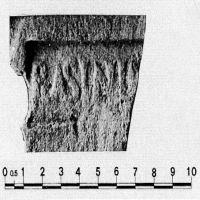 NovumCIL_XI_8113.16-7.10-CiampoltriniAndreotti1990-91_1.5